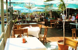 lotos-terrace_5839