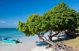 dominicana_beach