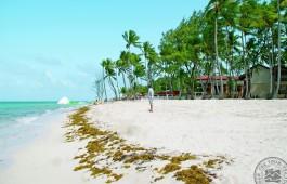 carabela_beach_3615