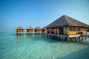 Meeru Island Resort & SPA признан одним из лучших 4-звёздочных отелей на Мальдивах