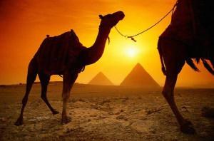В Египте можно пройти по пути святых