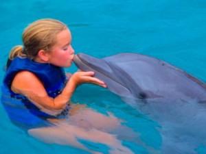 В Доминикане появился гигантский дельфинарий