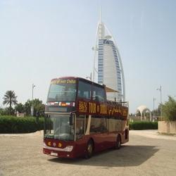 В ОАЭ экскурсионные автобусы объединили поездки по Шардже и Дубаю