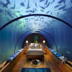 В ОАЭ можно приобрести подводные виллы