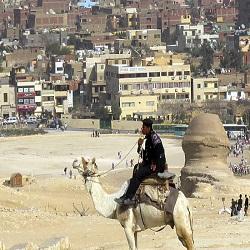 В Египте возможно появление новой столицы