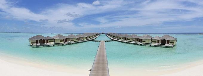 Сказочные Мальдивы от TEZ TOUR С-Пб