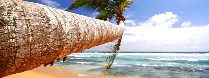 Экзотическое путешествие на Шри-Ланку!