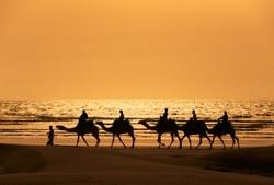 Марокко готово заменить россиянам Египет!