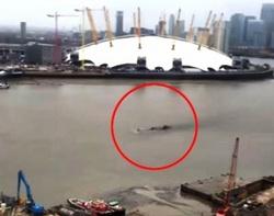 Лох-Несское чудовище перебралось жить в Лондон!