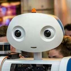 Завтра в аэропорту Пулково пассажиров будет встречать робот Борис!