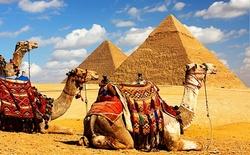 Открытие авиасообщения между Россией и Египтом не за горами!