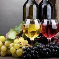 В Лимассоле пройдет ежегодный фестиваль вина!