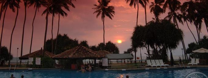 Волшебный отдых на Шри-Ланке!