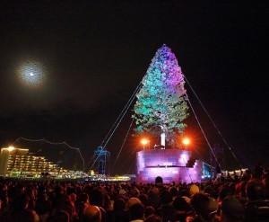 Самое высокое Новогоднее дерево.