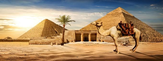 Туры в Египет!