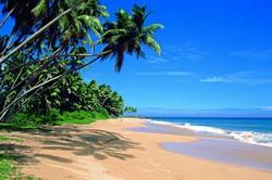 Шри-Ланка, как одно из популярных направлений для зимнего отдыха!