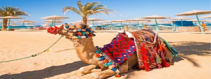 аквапарк - отель в Египте